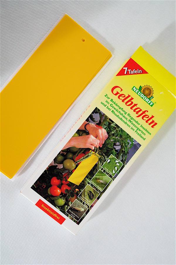 Headshop bong growshop shisha online shop for Gelbtafeln gegen zikaden